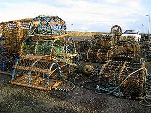Creel (basket) - Image: Creels, Ballywalter harbour geograph.org.uk 703078