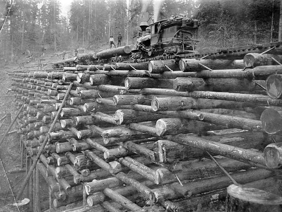 Crib trestle on the Columbia and Nehalem Valley Railroad (3227293964).jpg