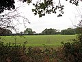 Cultivated field west of Mill Lane - geograph.org.uk - 1570410.jpg