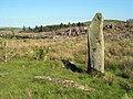 Curragh a' Ghlinne ('Stones of the Glen') - geograph.org.uk - 1086972.jpg