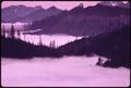 DISTANT VIEW OF OLYMPIC NATIONAL TIMBERLAND, WASHINGTON NEAR OLYMPIC NATIONAL PARK - NARA - 555130.tif