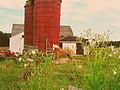 Dame Farm, Snake Den Park.jpg