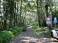 Dargow Naturschutzgebiet Wanderweg 2011-07-16 009.JPG
