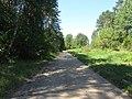 Daugų sen., Lithuania - panoramio (78).jpg