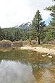 Davis Creek Park - panoramio (9).jpg