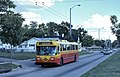 Dayton Flyer trolley bus 922 in 1996.jpg
