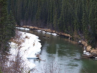 Dease River im Winter