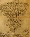Delle famiglie nobili Napoletane (1580) (14760555526).jpg