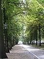 Den Haag (6026204283).jpg