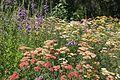Denver Botanic Gardens (181030813).jpg