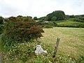 Derreennalomane - geograph.org.uk - 270904.jpg