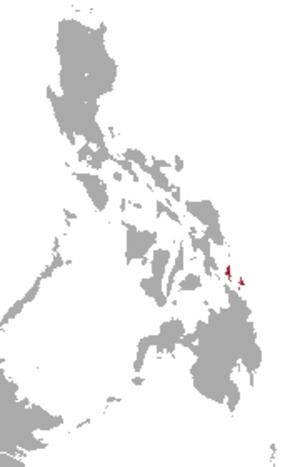 Dinagat gymnure - Image: Dinagat Gymnure area