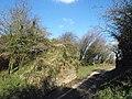 Dismantled railway bridge, Westholme - geograph.org.uk - 732151.jpg