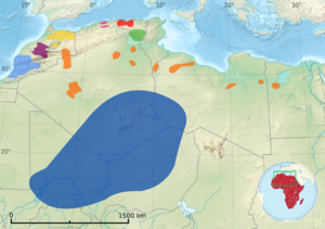 Sanhaja - Distribution of Berber-speaking groups (including Saharan Berbers: Sanhaja, and the Zenatan Mozabites and Siwis)