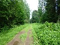 Dobryanskiy r-n, Permskiy kray, Russia - panoramio (171).jpg