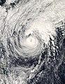 Dolphin 2008-12-16 at 0445 UTC.jpg