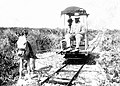 Donkey-drawn narrow gauge railway on Mona Island.jpg