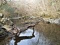 Downriver from Rhaedr Du - panoramio.jpg