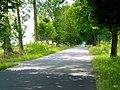 Droga w kierunku Dziechowa. - panoramio.jpg