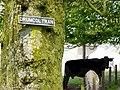 Drumcoltran Farm - geograph.org.uk - 254125.jpg