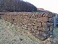 Dry stone wall - geograph.org.uk - 1733699.jpg