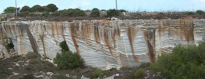Depositi di duna di età pleistocenica visibili in un fronte di cava abbandonata nell'isola di Favignana (Isole Egadi, Sicilia). Ben visibile l'architettura di questi depositi, che conservano in sezione la morfologia originale (si tratta di vere e proprie dune fossili). L'affioramento visualizzato ha un'ampiezza di circa 30 m. La paleo-direzione del vento è approssimativamente da sinistra a destra, anche se non è possibile essere precisi guardando una sola sezione di affioramento (vedi testo). Per i depositi alla base dell'affioramento la direzione approssimativa del vento è opposta (da destra a sinistra).