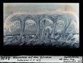 ETH-BIB-Wasserhose auf dem Zürichsee, beobachtet 5.1.1919-Dia 247-02430.tif