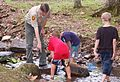 Each summer one of the most popular programs at Hungry Mother State Park is the Critter Crawl where the participants investigate what lives in a creek at the park. - AA (19093144046).jpg