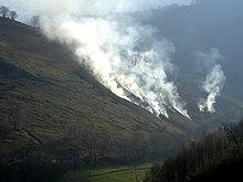 https://upload.wikimedia.org/wikipedia/commons/thumb/f/f4/Ecobuage1.jpg/220px-Ecobuage1.jpg