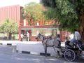 Egypt.Luxor.LuxorMuseum.01.jpg