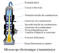 Electron Microscope-fr.png