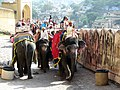 Elephant riding at Amber fort. - panoramio.jpg
