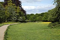 Elevated wooden path in Hatfield Forest Essex England.jpg