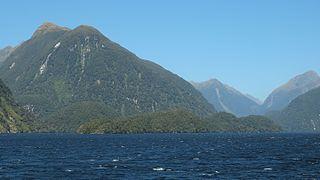 Elizabeth Island, New Zealand