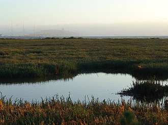 Emeryville, California - Emeryville's mudflats