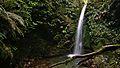 Emily Falls (landscape).jpg