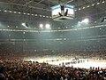 Eroeffnungsspiel eishockey wm 2010.jpg
