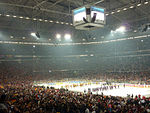 Ice Hockey at the Veltins-Arena