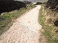Erosion prevention - geograph.org.uk - 2326016.jpg