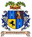Escudo spaccanapoli.jpg