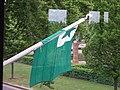 Esperanto flag (2).jpg