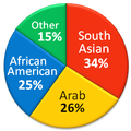 Ethnic composition of Muslim Americans.png
