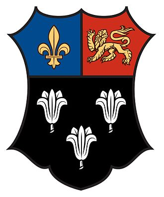 Eton College -  16-17th century coat of arms produced from the masonry of Eton College building.