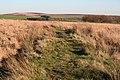 Exmoor, bridlepath near Elsworthy - geograph.org.uk - 80173.jpg