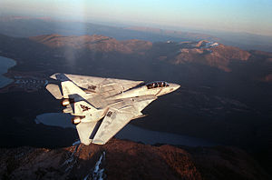 F-14B VF-143 Rear Overhead View 1993.JPEG