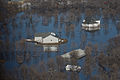 FEMA - 40512 - Aerial of flooding in North Dakota.jpg