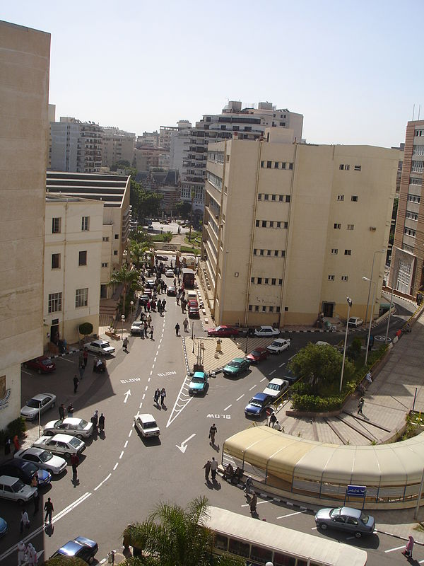 health care of egypt As one of the largest health care markets in the mena region, egypt is looking to meet rising demand for services driven by its growing population.