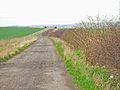 Farm road to Garmondsway from Harrap Hill - geograph.org.uk - 155994.jpg