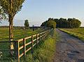 Farm track Belby Common.jpg
