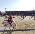 Festival taurino en Casatejada.png